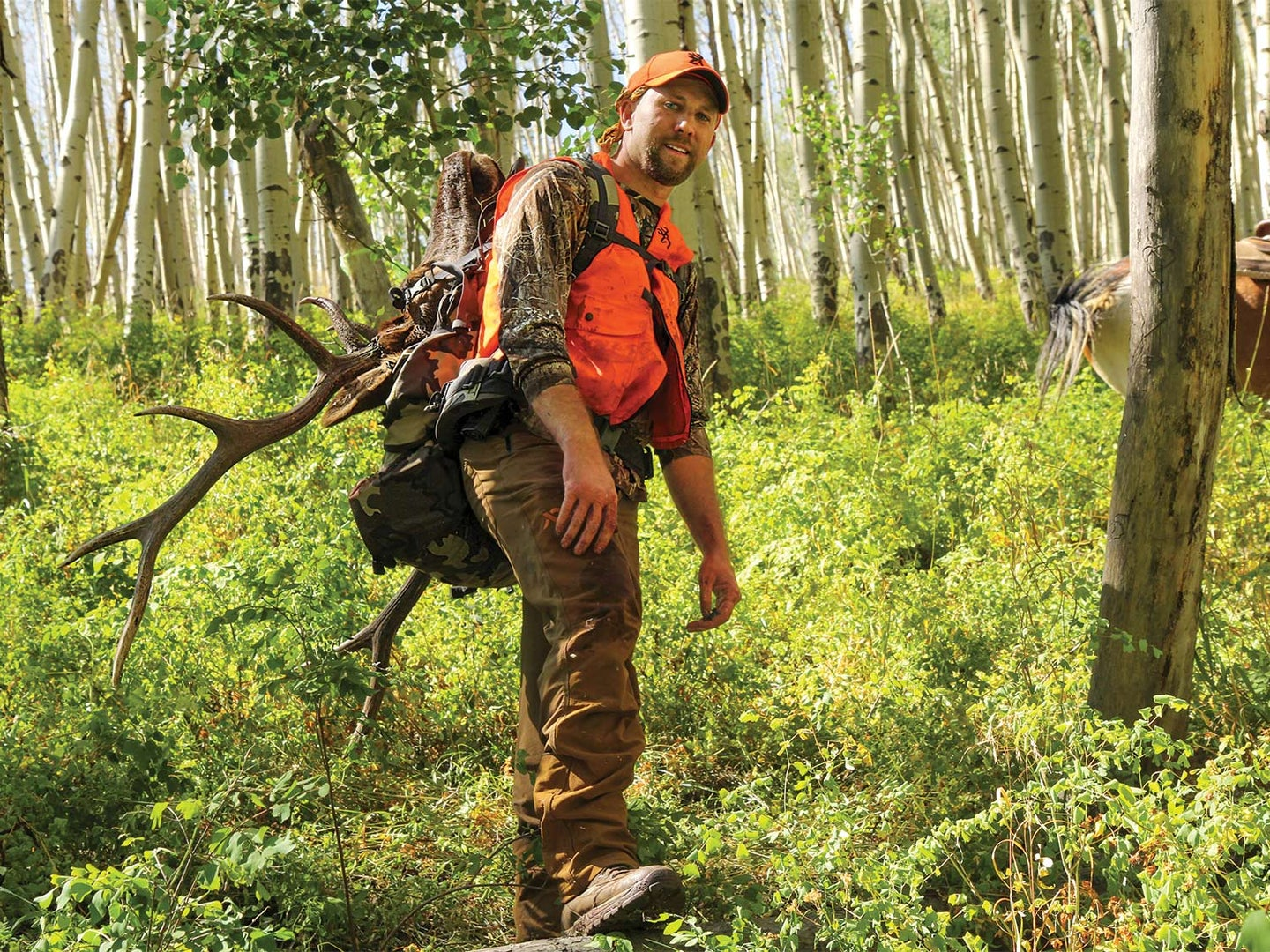 A hunter in camo and orange carries a backpack and elk antlers through sunlit woods.