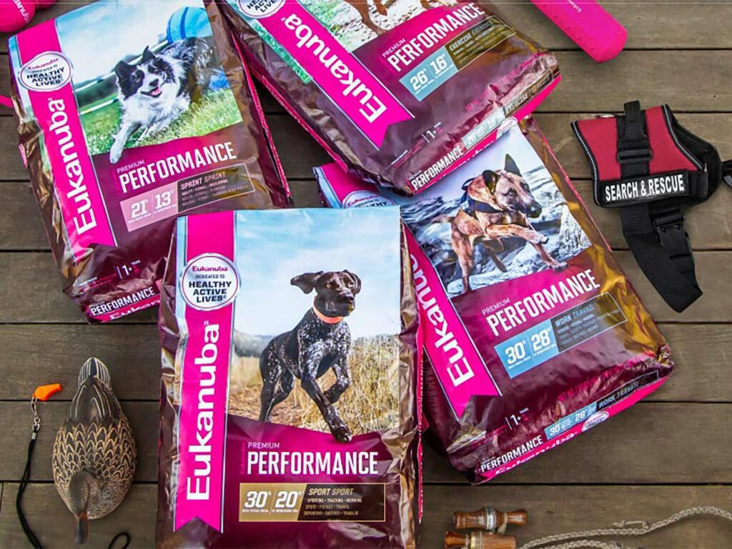 Several bags of Eukanuba hunting dog food.