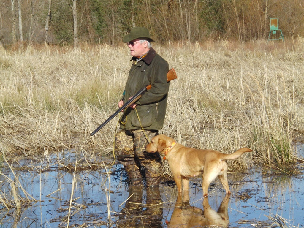 A hunter and a hunting dog wade through a marsh.