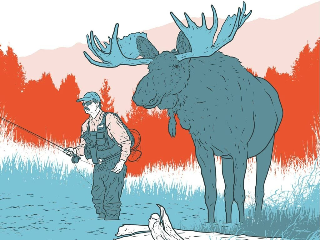 Illustration of a moose standing next to a fisherman that's wading in a stream fishing.