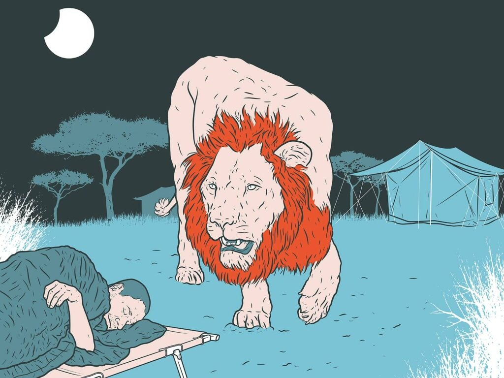 Illustration of a male lion sneaking up on a hunter sleeping on a cot.
