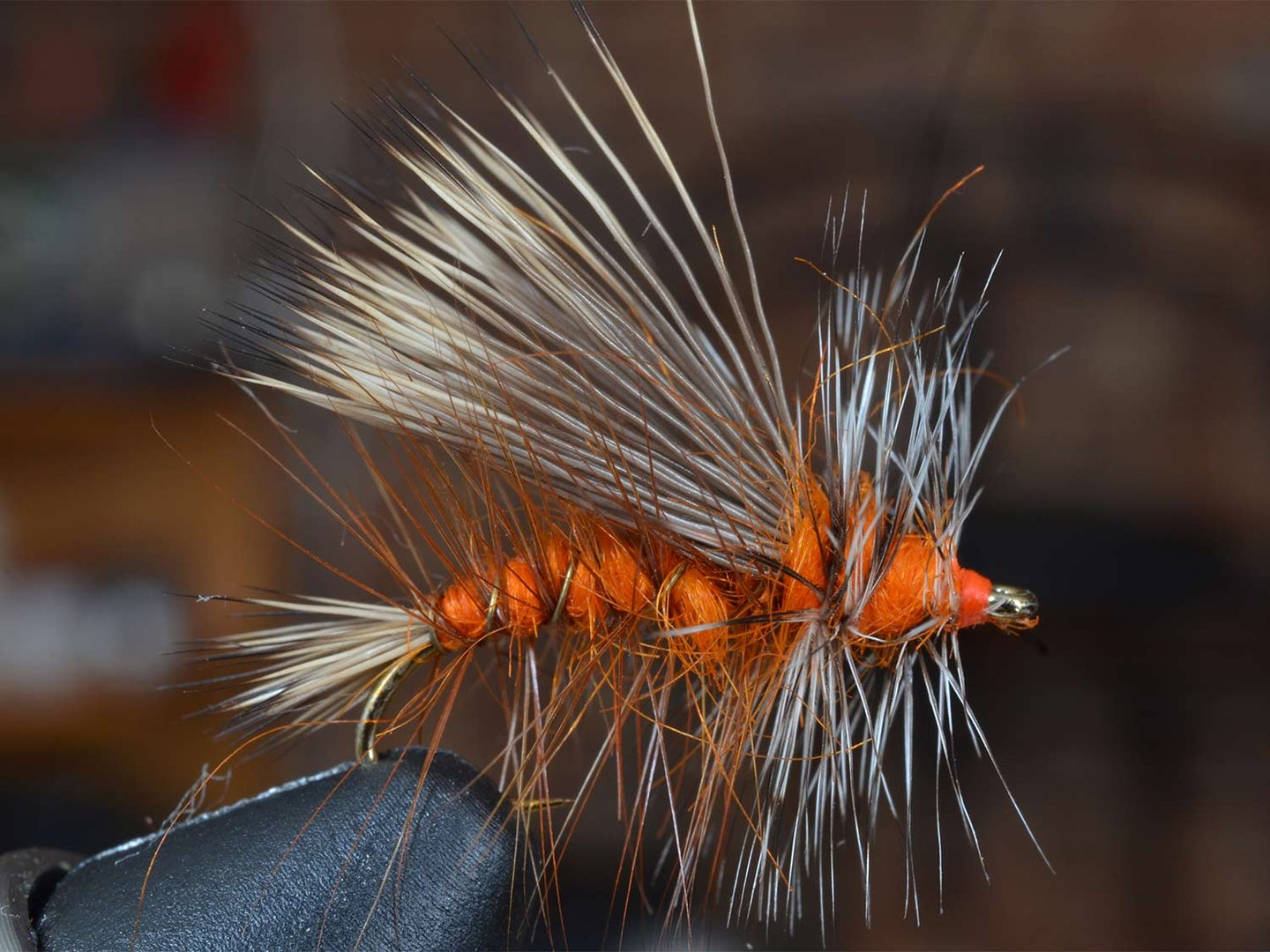 An orange and white spiked fuzzy stimulator fly lure in a vice.