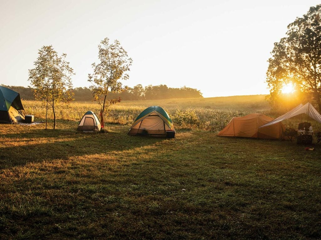 A grouping of camping tents in a large open field. The sun peeks out over the horizon and casts shadows on the ground from the tents and the surrounding trees.