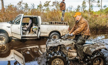 Hunting Black Bears with Hounds in the Famed Bruin Swamps of North Carolina