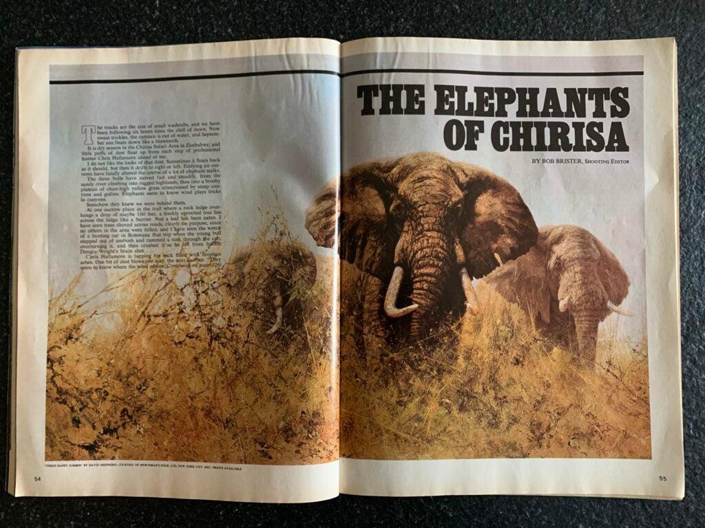 elephants-of-chirisa