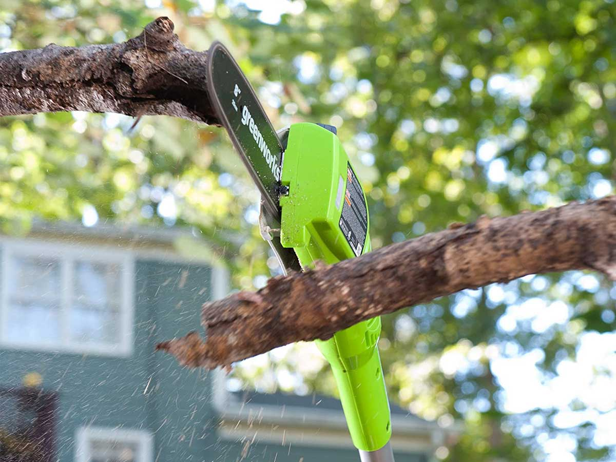 pole pruner cutting a tree