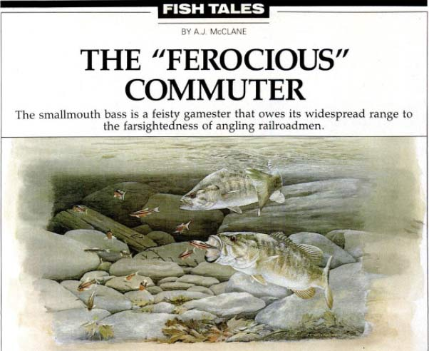 A clipping from a Field & Stream magazine article called