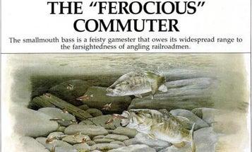 "F&S Classics: The ""Ferocious"" Commuter"