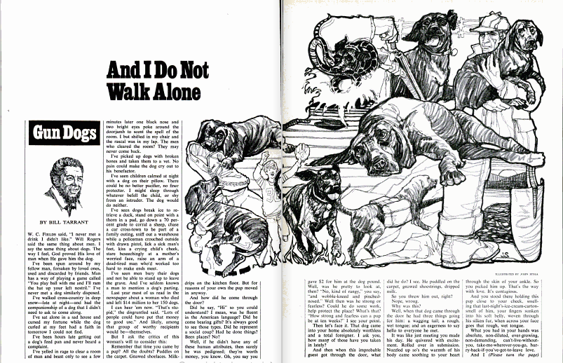 A clipping of an old field and stream article featuring an illustration of dogs.
