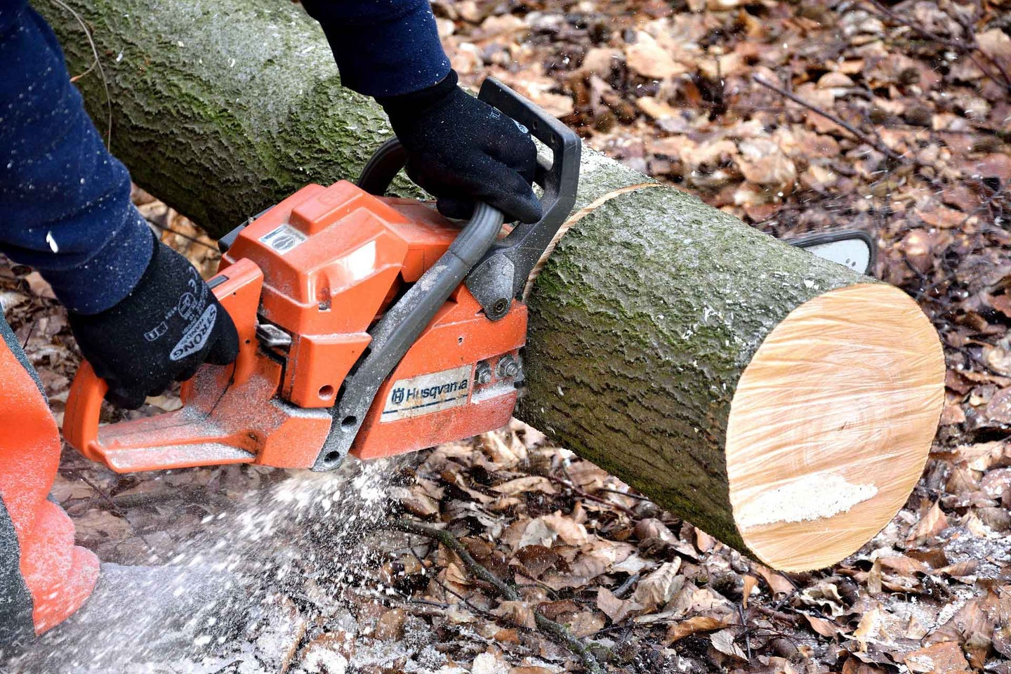Person using a chainsaw