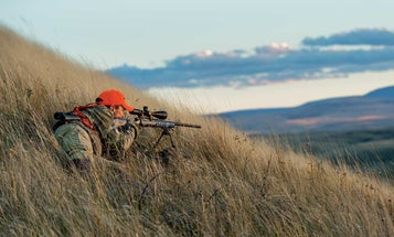 How to Make an Accurate Rifle Shot in the Wind