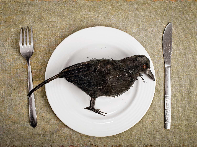 A crow on a plate.