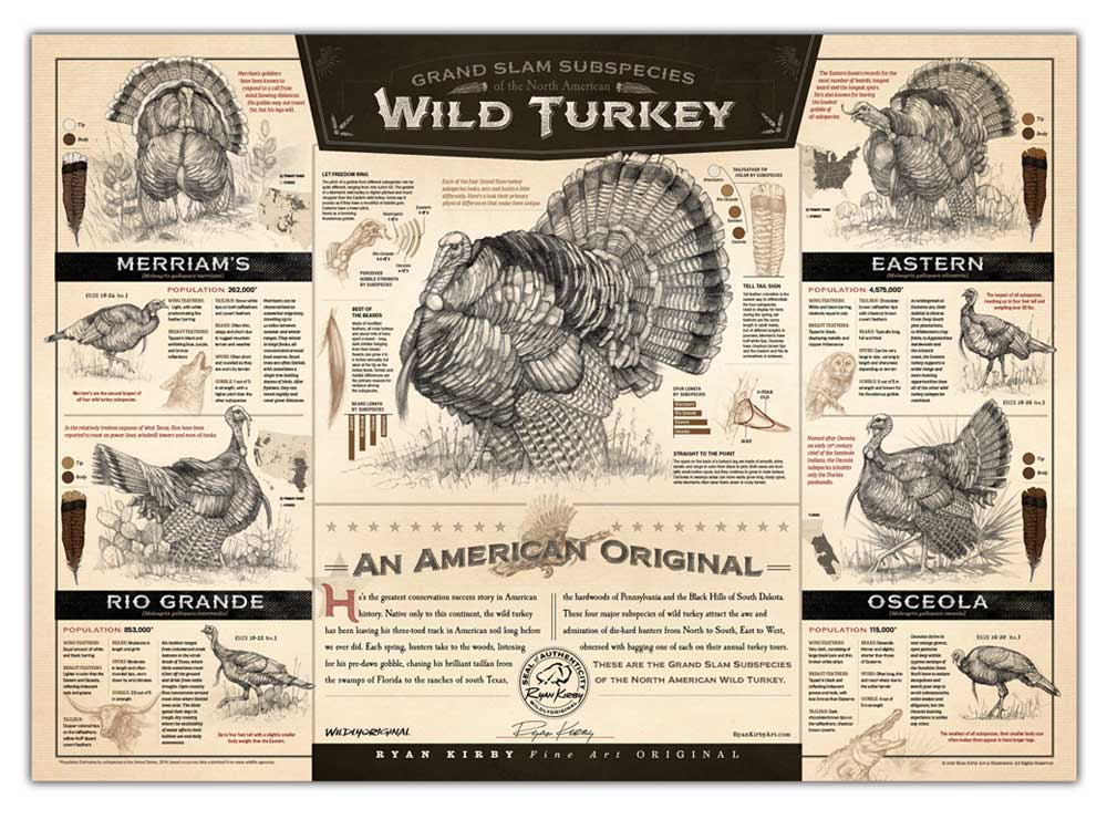 The Grand Slam Subspecies of the North American Wild Turkey Paper Pring