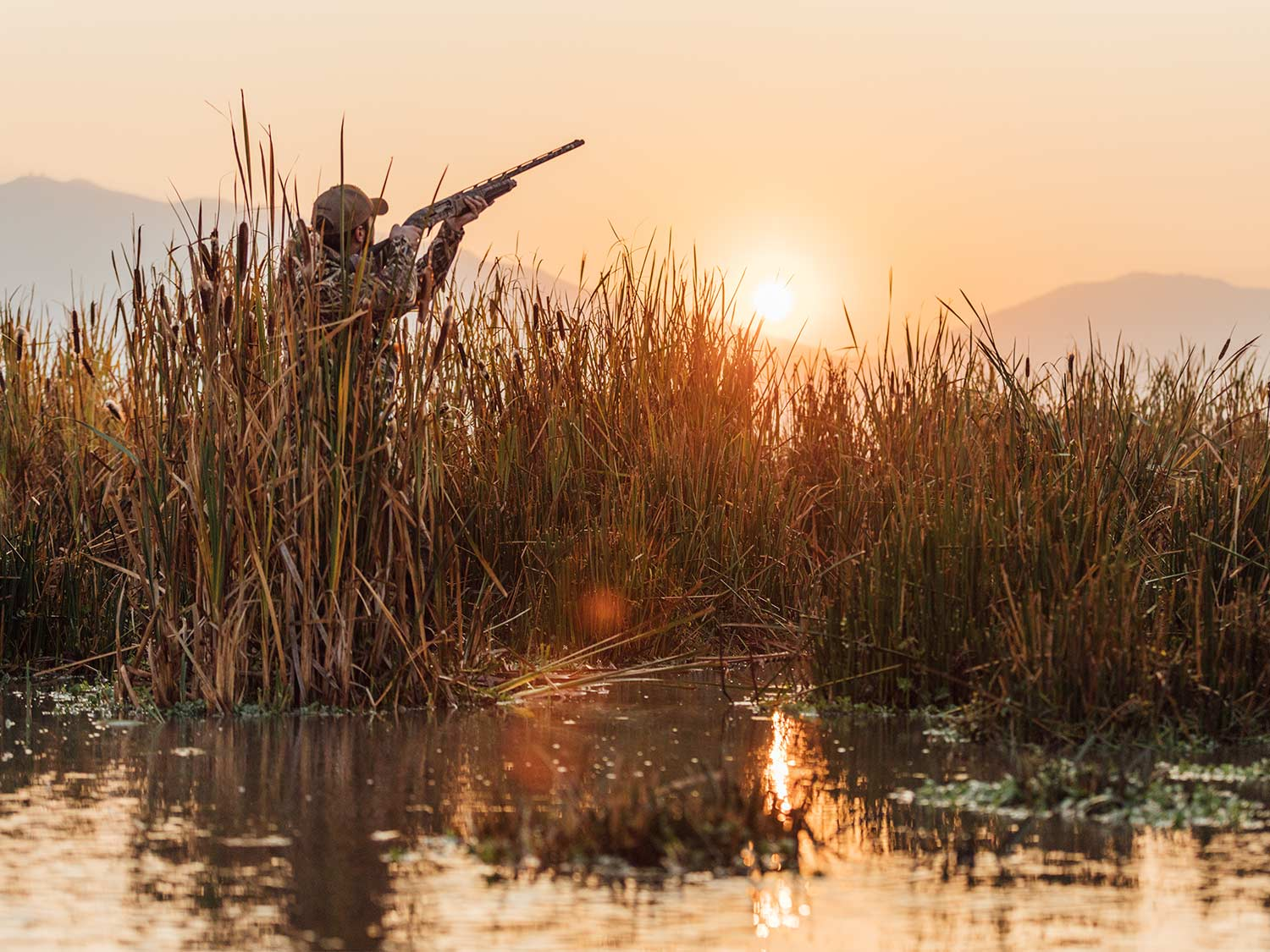 A waterfowl hunter stands in a marsh and aims a shotgun.