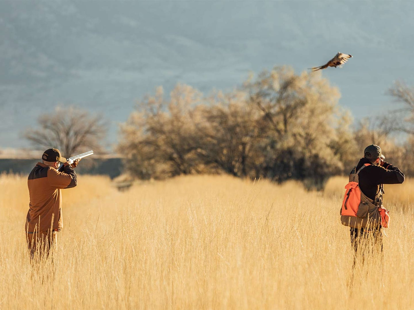 A group of hunters shooting for pheasants in the open fields.