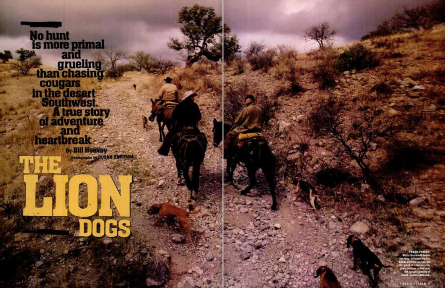 """A spread from Field & Stream magazine called """"The Lion Dogs"""". Hunters ride on horseback through a wild plain followed by their hunting dogs."""