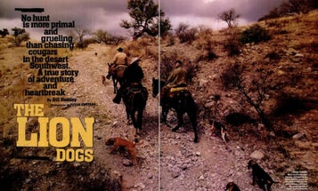 F&S Classics: The Lion Dogs