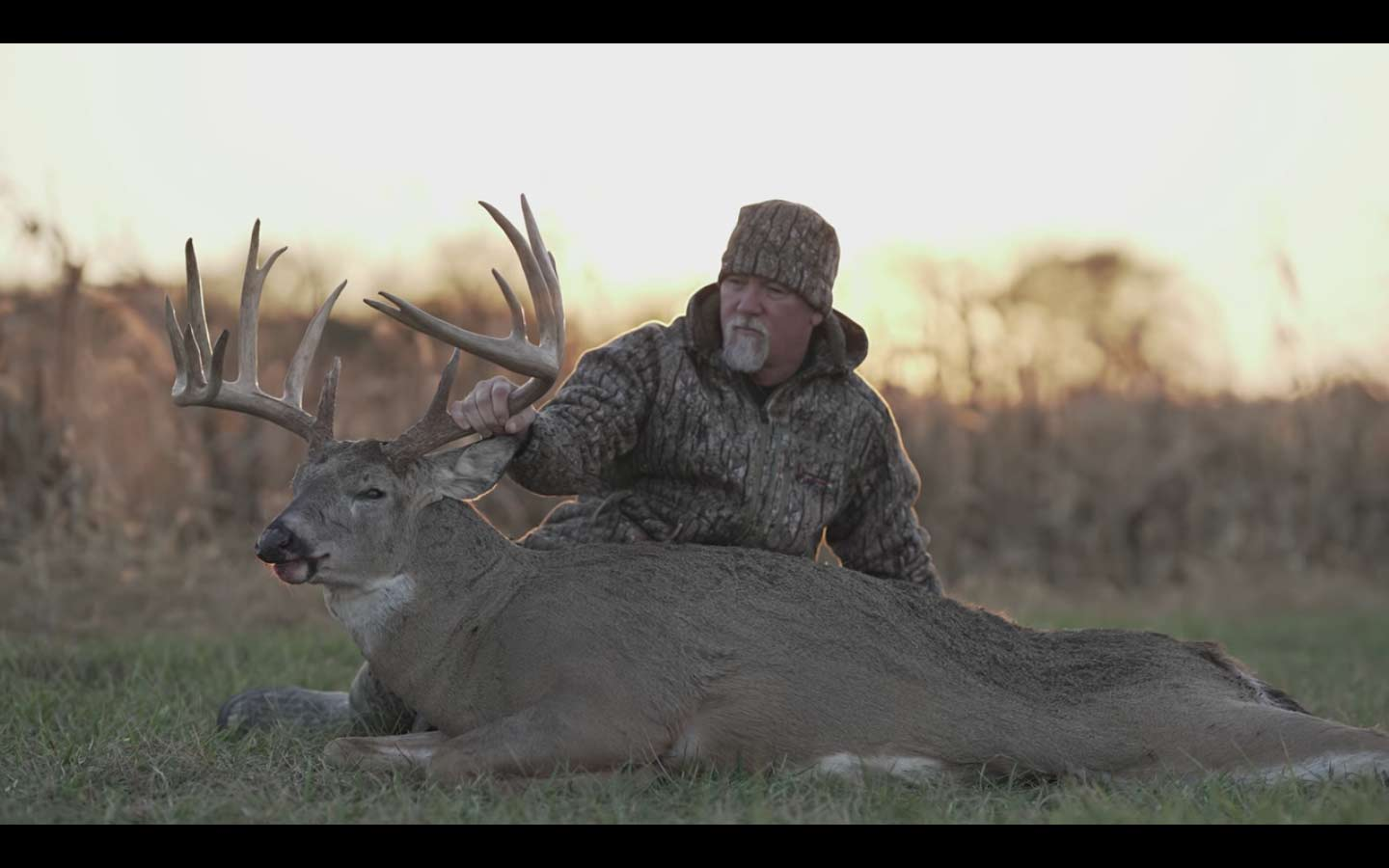 A hunter kneels next to a dropped whitetail deer and holds its antlers.