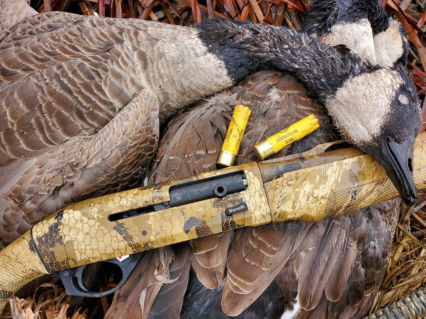 A waterfowl hunting shotgun next to a limit of geese.