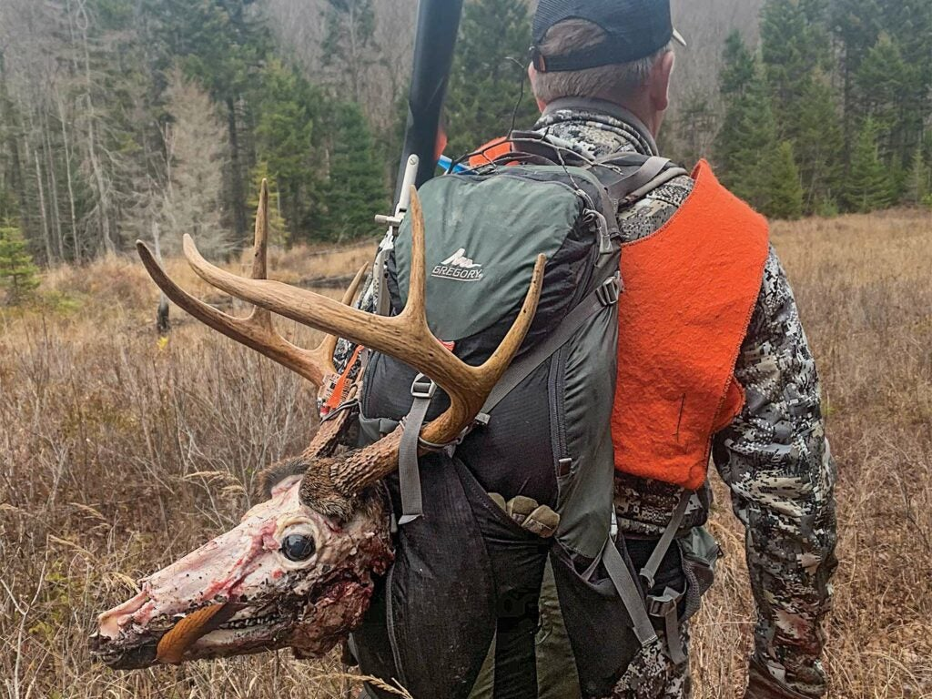 A hunter walks through a field with a deer head strapped to his back.