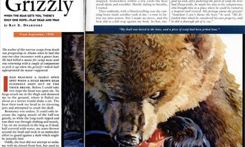 F&S Classics: Mauled by a Grizzly