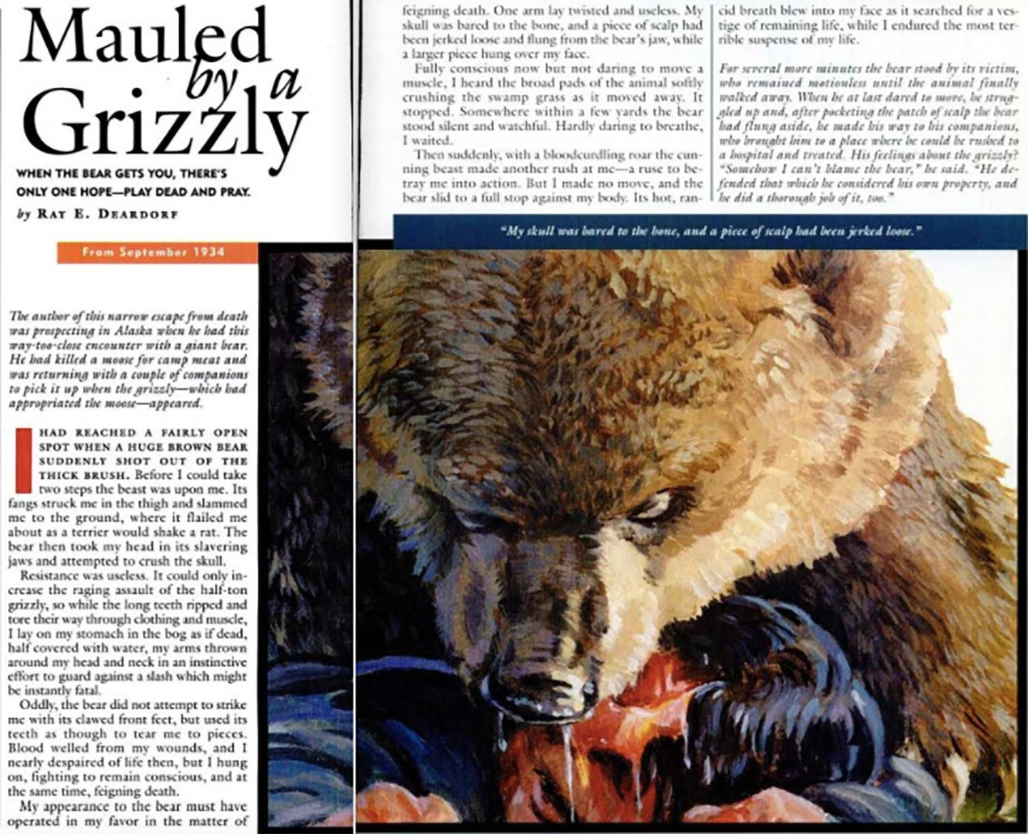 A magazine clipping from Field & stream showing a grizzly bear mauling