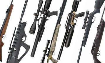 Can't Find Any .22 Ammo? These Are The Best Air Rifles for Squirrel Hunting