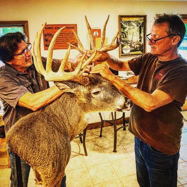 Tim Walmsley and Jim Barry measure Don Higgins buck.