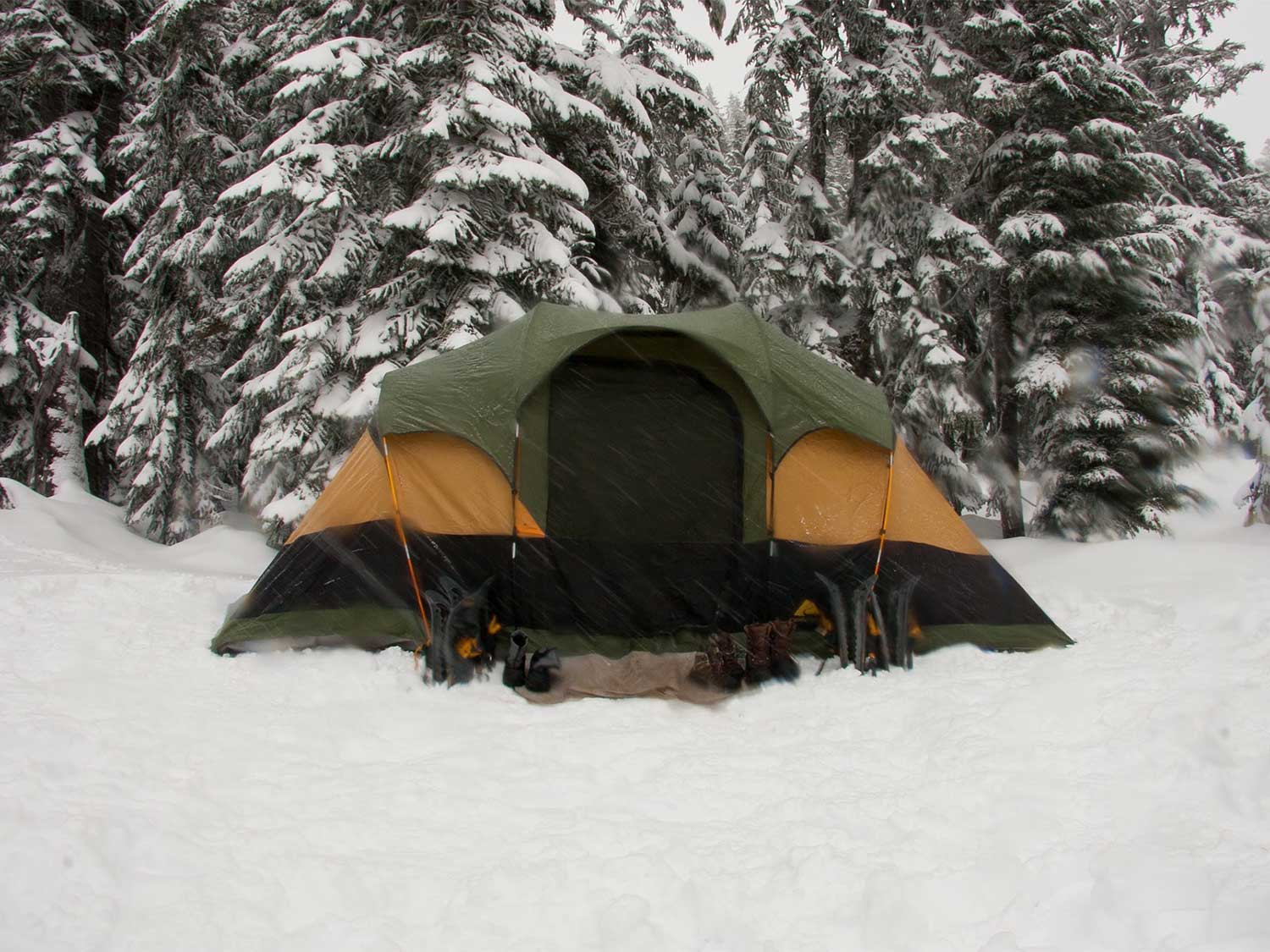 A single camping tent in the snow next to a tree line.