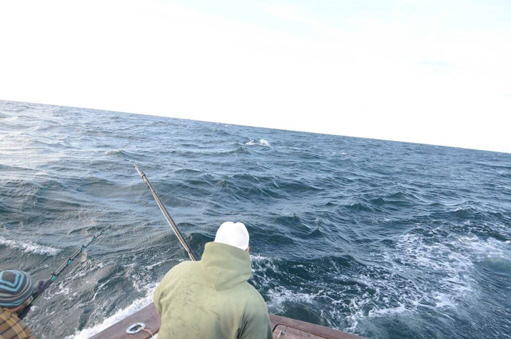 An angler fishing off the back of a boat deck.