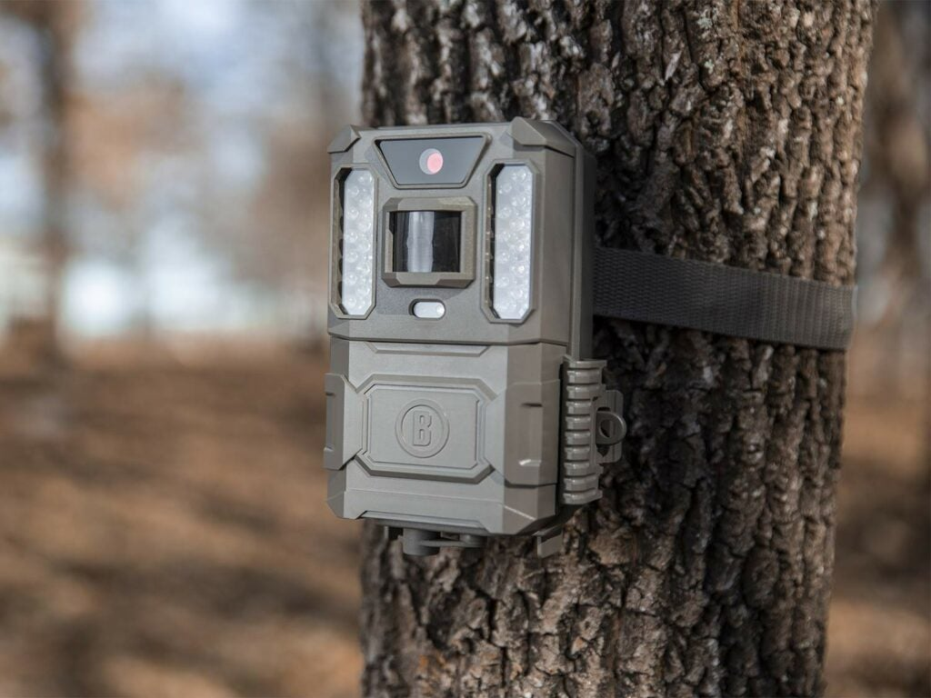 The Bushnell Prime Low Glow Trail Camera.