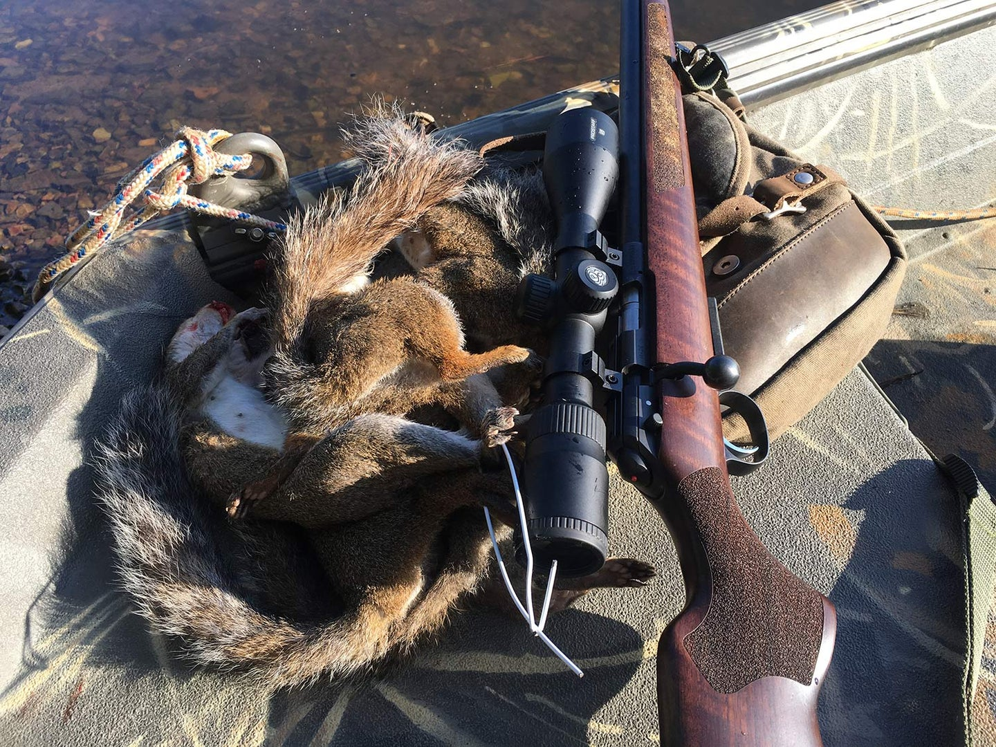 A rifle next to a small squirrel