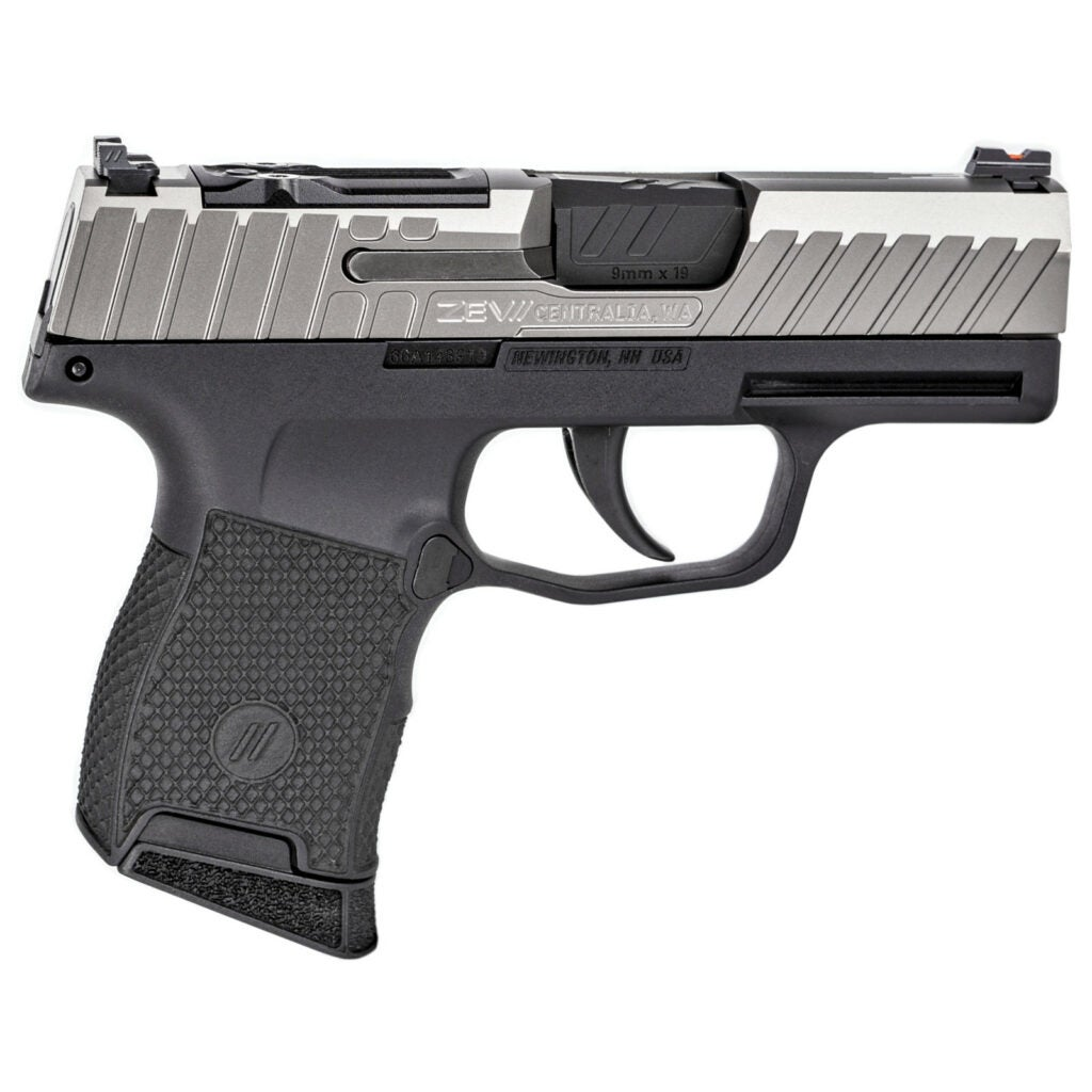 Polymer frame two-tone stainless 9mm pistol.