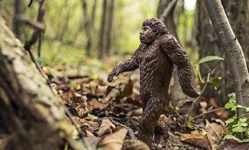 Oklahoma Lawmaker Proposes Bigfoot Hunting Season