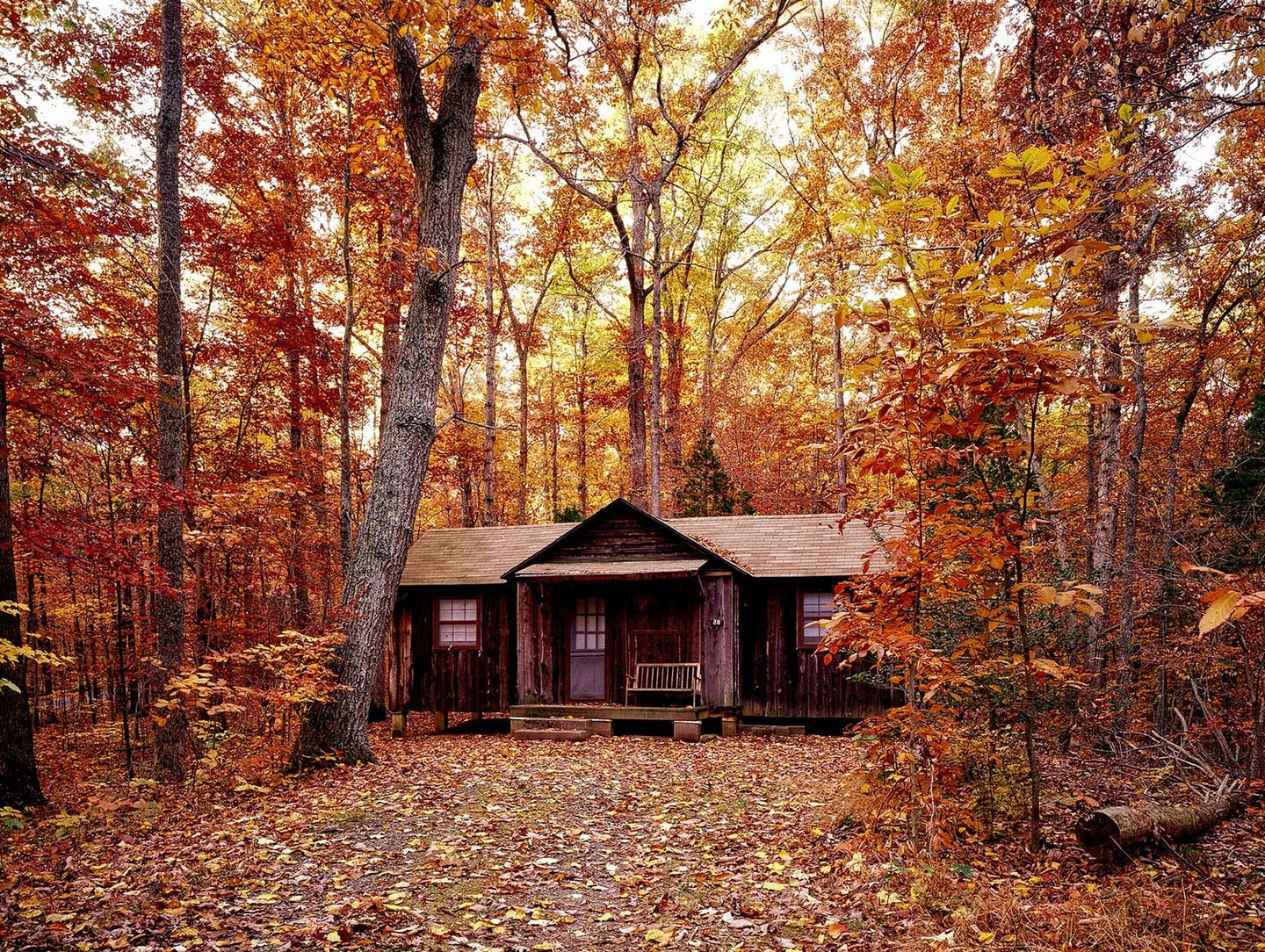 A log cabin in the woods during the fall.