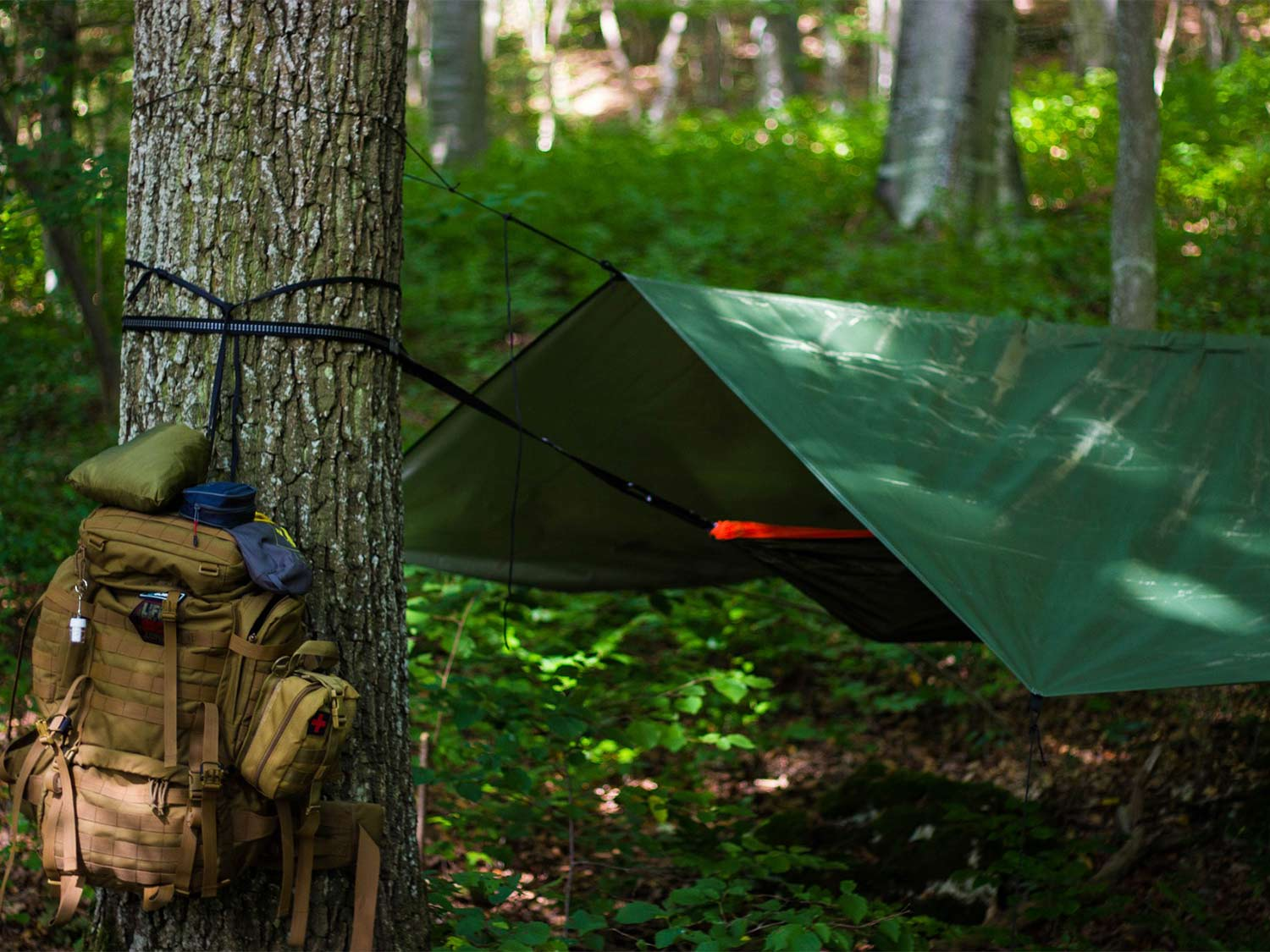 A backpack hanging on a tree and a hammock tarp tied to a tree.