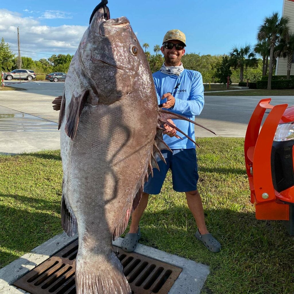 A man stands next to a large warsaw grouper.