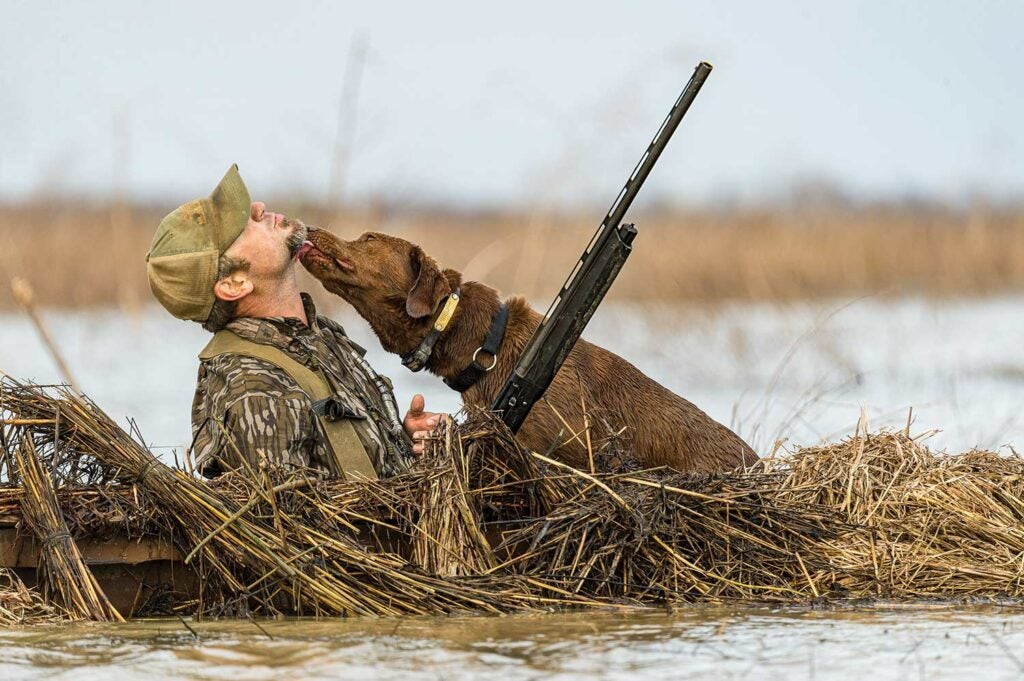 Duck hunter and his hunting dog.