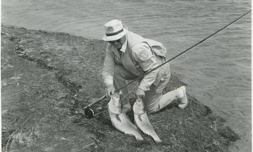 Vintage Striper Fishing from the Field & Stream Archives