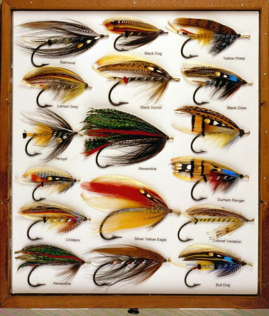 a collection of fly lures