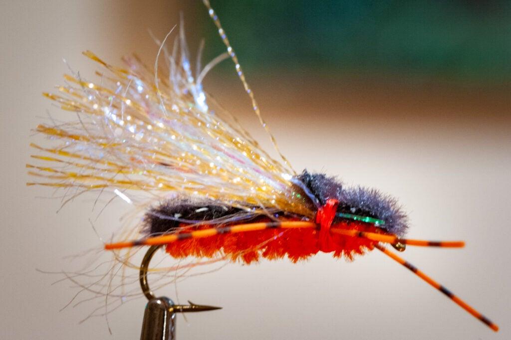 sunken cicada flyfishing pattern.