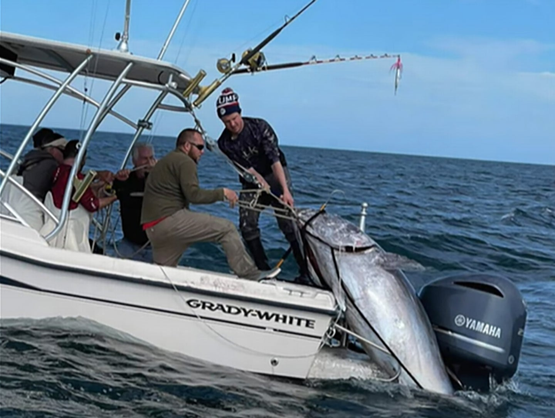 A fishing team pulls a large bluefin tuna on board.