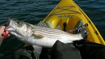 Angler holding fish in kayak.