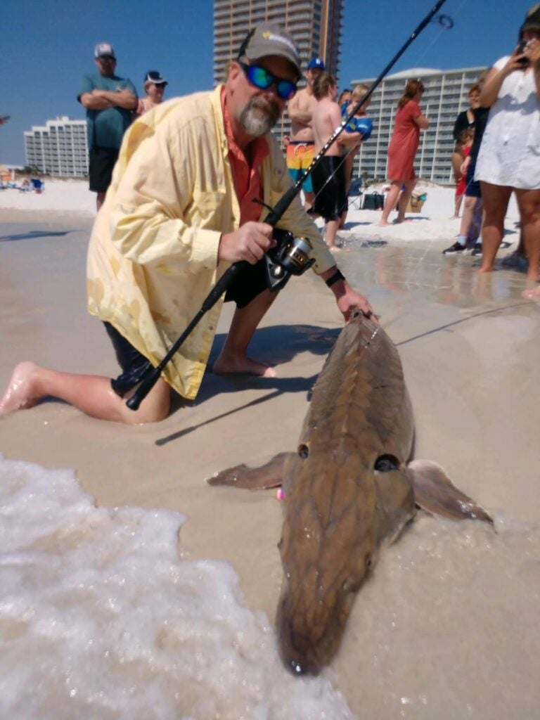 A man kneels on the sand of a beach next to a large sturgeon.