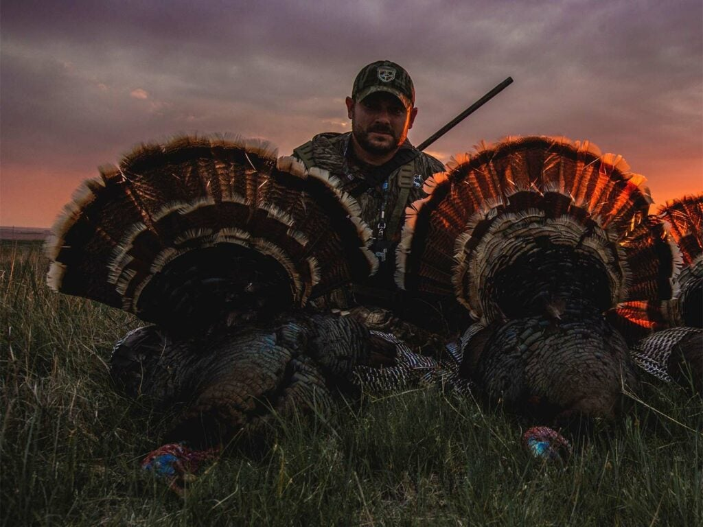A hunter poses next to two turkeys on the ground.