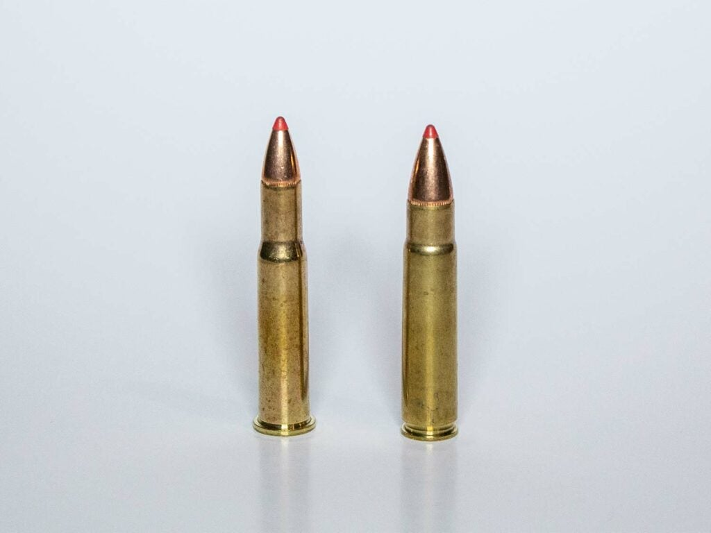 Two rifle bullets on a grey background.