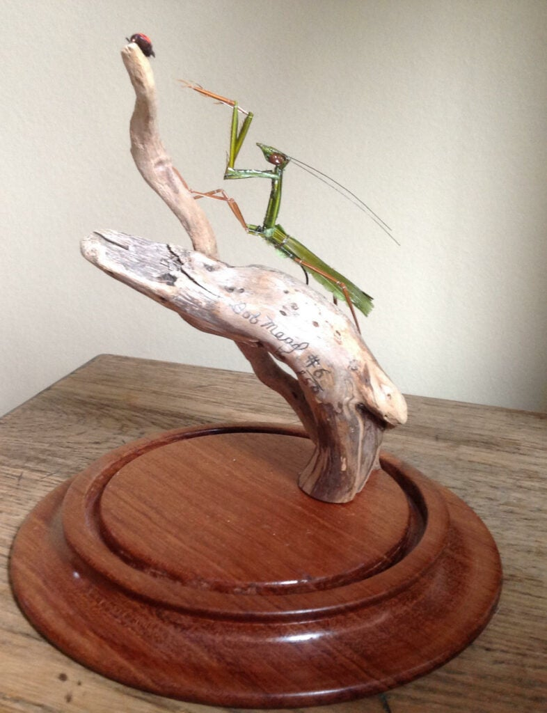 Bob Mead's Praying Mantis.