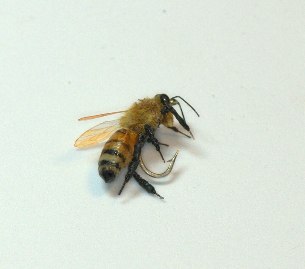 Fred Hannie realistic Bee fishing fly.