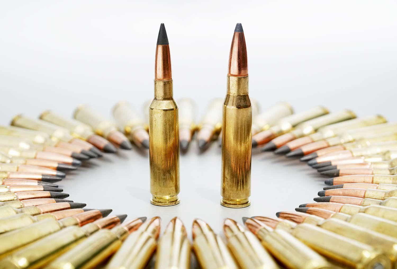 .30/60 cartridge