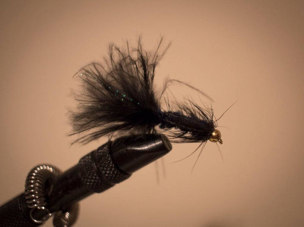 woolly-bugger-trout-fly